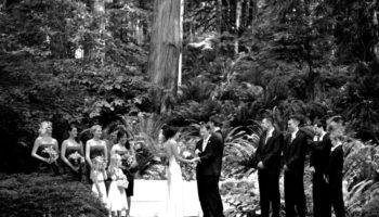 Wedding #1